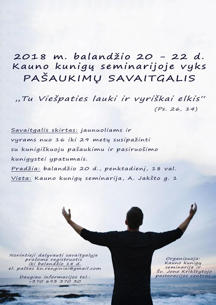 plakatas vaikinų kitas galutinis A3 2018